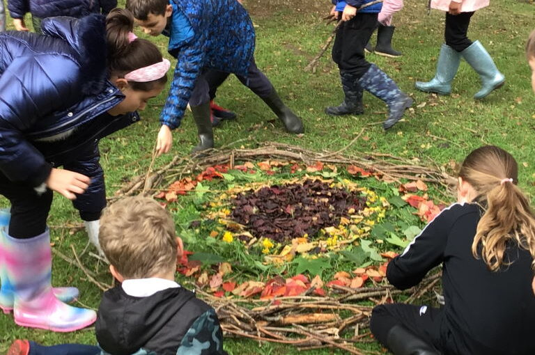 Year 4 Outdoor Learning Day